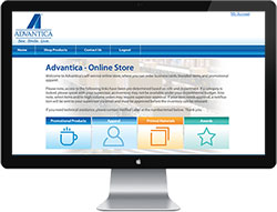 Online Company Store Demos